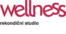Wellness studio WellnessTop Kladno